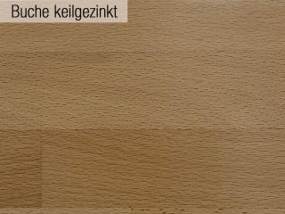 02_Buche_keilgezinkt