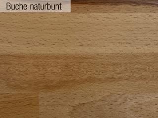 03_Buche_naturbunt