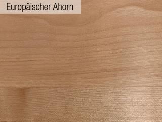 05_Europaeischer_Ahorn